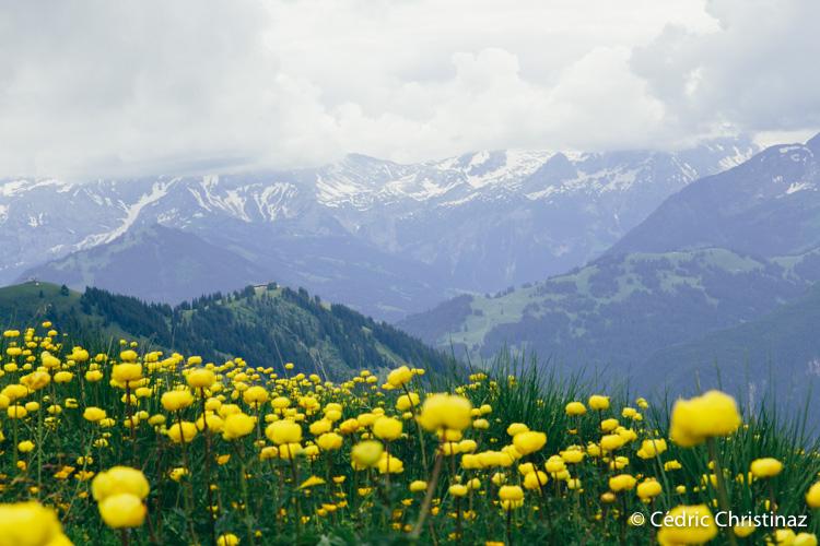 Grubenberghütte, Mittelberg, Ablänschen