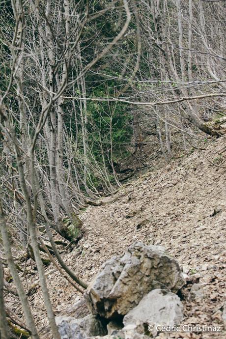 Les Tsavas au pied de la Pointe de Paray