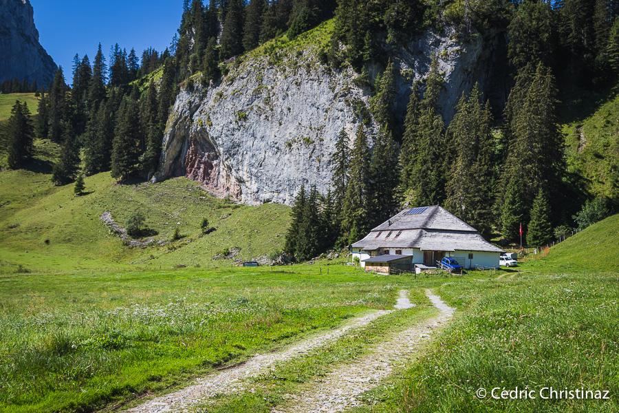 Forêt Lapé, Petit Mont